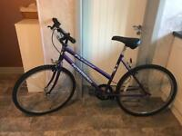 "Girls Professional Mountain Bike With 19"" Frame & Shimano Gears."