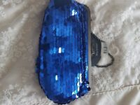 Evening bag Sequined