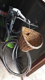 Rayleigh Push Bike