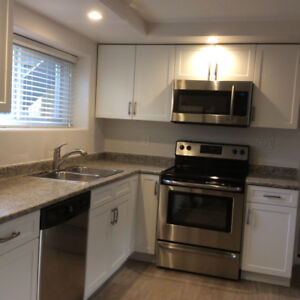 Bright Newly Renovated 1 Bdrm. Bsmt. Suite in Westmount