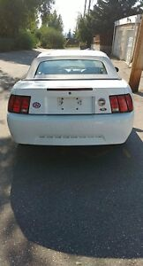 1999 Ford Mustang Convertible (Trade OBO)
