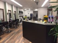 Busy East Toronto Salon Looking for a Experienced Stylist