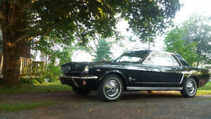 1965 Mustang - Black on Red