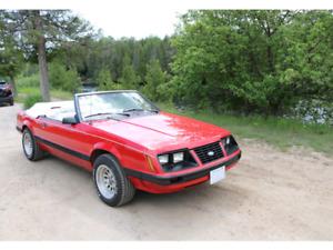1983 5.0 Litre Mustang Convertible