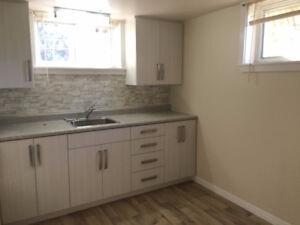 NEW Arnprior Apartment