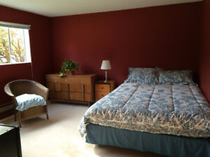 $495 Large, Bright Room for Rent (Colwood)