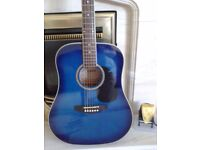 Guitar Ashton Blue Starter