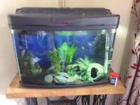 68L Fish tank