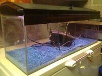 80ltr Fish Tank