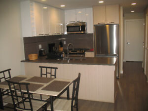 SFU FURNISHED ONE BEDROOM PLUS DEN AVAILABLE NOW