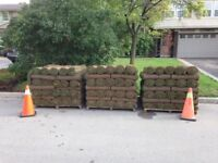 Start tomorrow $15-$16 /hr  - Landscaping personal wanted.