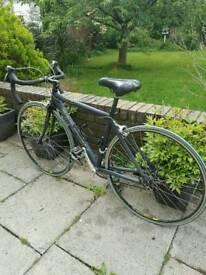 Principia road bike