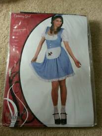 Dorothy Costume. Fancy Dress - Small. From Wizard of Oz