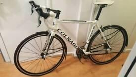 Colnago carbon alloy road bike!