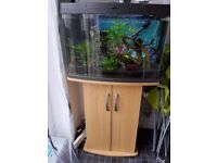 Love Fish Panorama 64L Tank w. Stand & lots of accessories