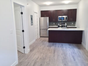 Brand New 1 Bed 1 Bath BSMT Suite - West Kelowna