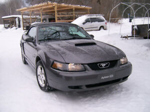 2003 Ford Mustang Poly Package 2 door Convertible