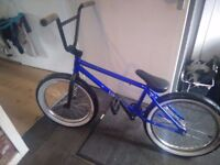 Limited edition blue vandals bmx