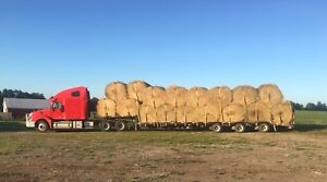 Top Quality Horse & Cattle Hay