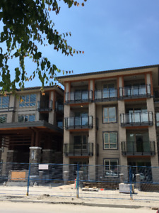 Cameron Brand New 2 Bedroom Near Lougheed Town Centre