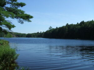 472 acres near Parry Sound, private lake, pine trees plantation
