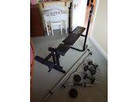 Everlast Foldable Weight Bench + 99.5 kg Weights + Weight Bars