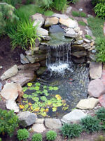 Wanted: Experienced help for pond installation