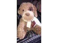 Passport teddy