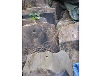 Approx 150 roof stone