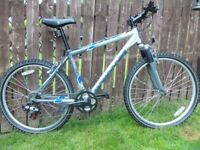 Adult hard-tail,fully serviced,mountain bike,stunning condition