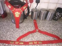 Red leather Staffy harness