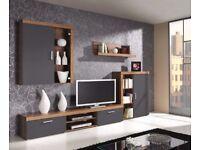 Wall unit (TV stand, cabinets, shelf)