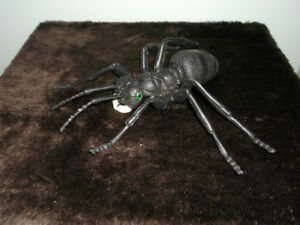 REDUCED:    All About BUGS! Large Spider Model and Book
