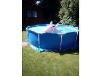 Swimming pool, solar cover, shark, a few chemicals, dispenser.
