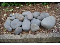 Selection of large Sea Pebbles