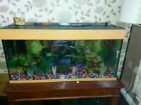 Fish tank 3ft 1/2