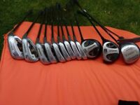 Set of DONNAY Evolution RH Golf Clubs