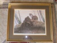 FRAMED OTTER PRINT SIGNED IN PENCIL BY THE ARTIST J.S. WAIDE & IS IN GOOD CONDITION £25