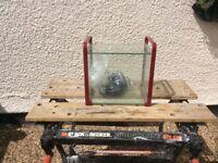 Small cool water aquarium fish tank set up