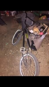 bmx for sale good dral