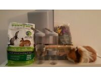 Ferplast Cage Accessories for Rabbits or Guinea Pigs (Plus some other freebies)