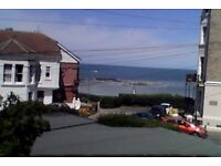 Seaside Victorian 2 Bedroom flat ,close to train station,town centre,shops and beach