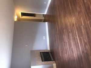 $1300 / 2br - 2-bedroom basement suite for rent (West Abbotsford