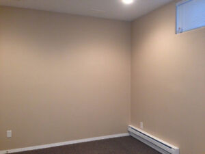 Awesome 1 bedroom basement suite in Willowgrove