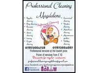 PCM Cleaner