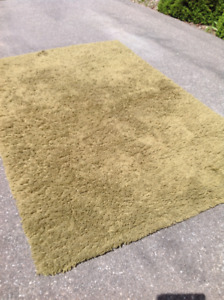 Green/Brown Area Rug