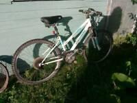 Mountain bike, ladys,girls