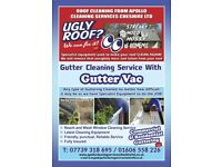 Gutter cleaning with gutter vac.