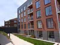 Room in shared Apartment - Brand new stylish and contemporary Accommodation