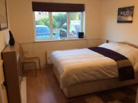 Double room to rent within family home
